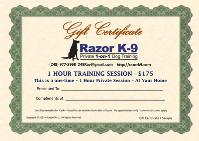 1 Hour Training Session Gift Certificate