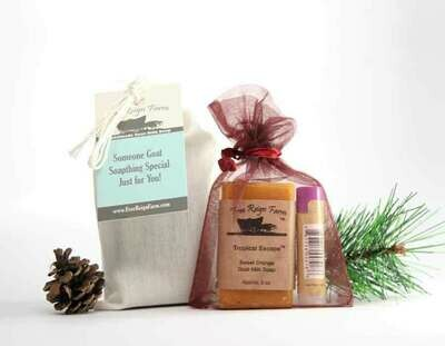 <strong>Gift Bags </strong><br> Soap & Lip Balm Set