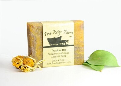 <strong>Tropical Ice  </strong><br>Orange & Spearmint  <br>Goat Milk Soap