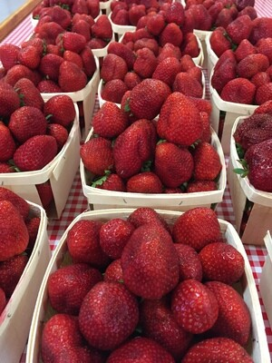 STRAWBERRIES - sold by the quart