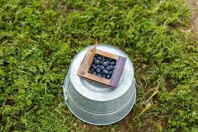 Blueberries 6oz
