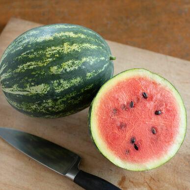 Watermelon mini seedless