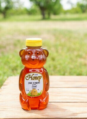 Honey Bear Large