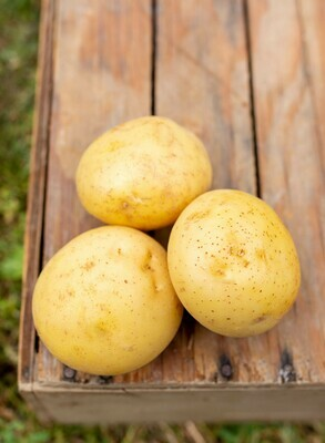 Potatoes Gold
