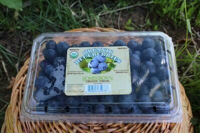 Blueberries 18oz