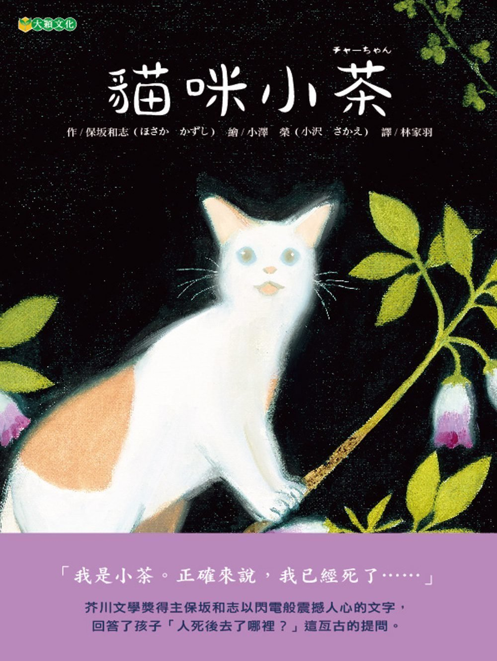 [本地郵寄+掛號] 貓咪小茶