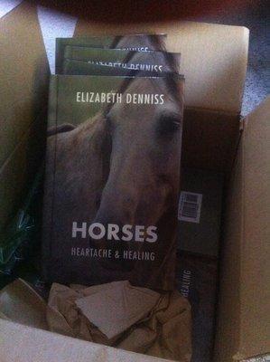 Horses, Heartache & Healing Paperback