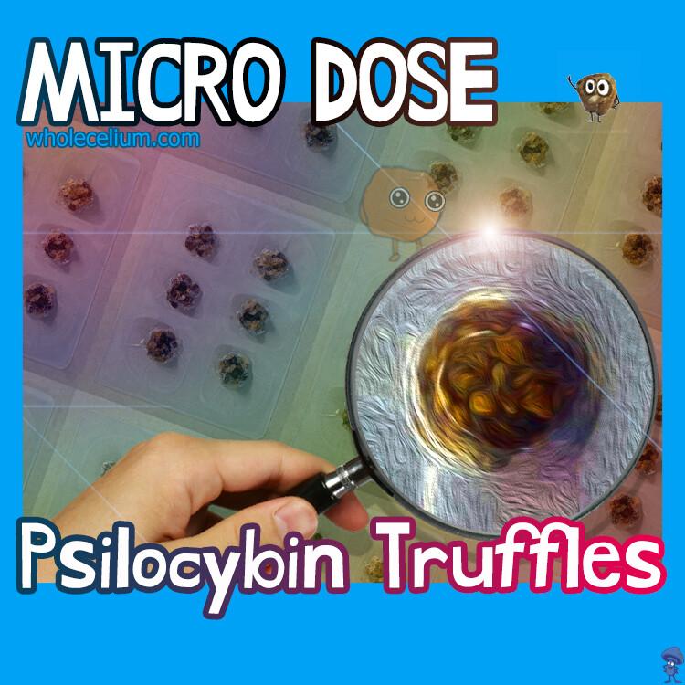 MIKRODOSIRANJE 'XP' Psilocibin
