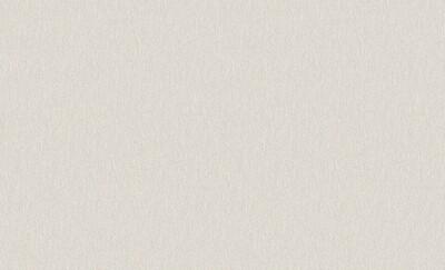 6147-2 Обои Erismann флиз. 1,06м*10м