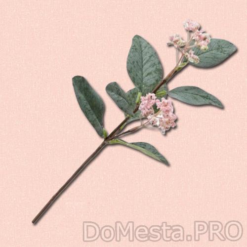 СМИККА Цветок искусственный, эвкалипт розовый, 30 см