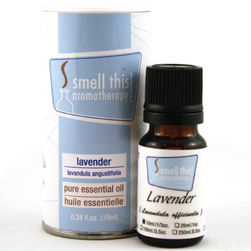 Lavender - lavendula angustifolium