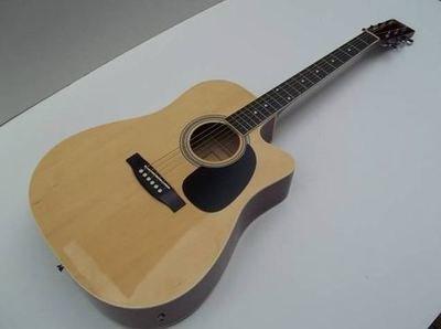 Eleca Acoustic/Electric Guitar