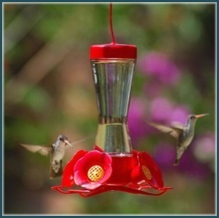 Hummingbird glass 8 oz. feeder