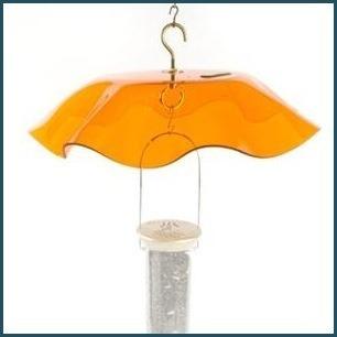 Orange Weather Guard