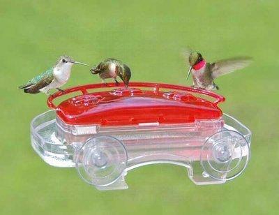 Jewel box hummingbird window feeder