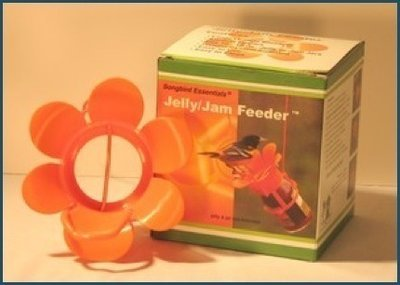 Jelly/Jam Oriole Feeder