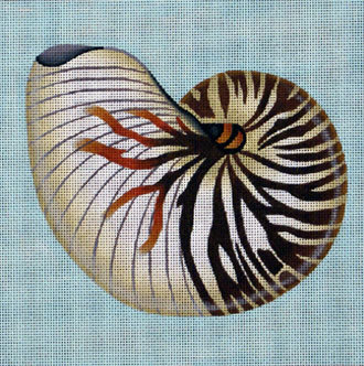 Nautilus    (handpainted by Melissa Shirley) 18*909A