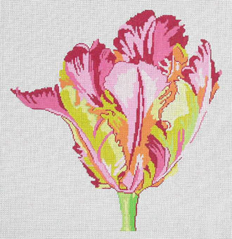 Regal Parrot Tulip       (handpainted by Jean Smith) 18*15C