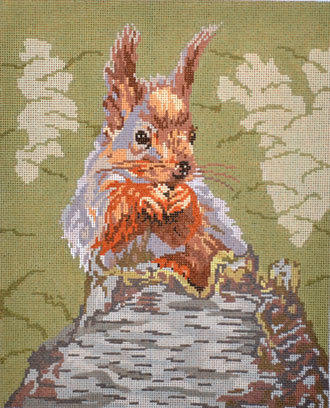 Squirrel (Handpainted by Barbara Russell Designs) 18*BR436