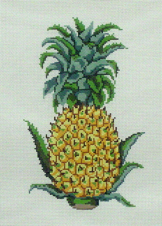 Pineapple         (handpainted by All About Stitching) 18*P129B