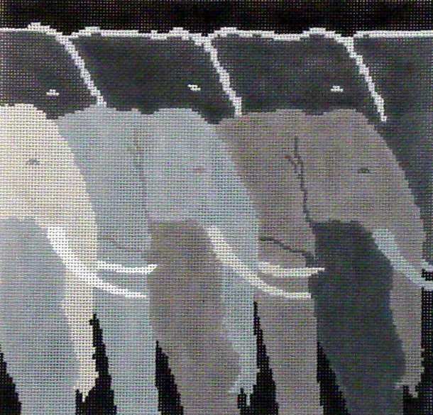 Tuskers     (handpainted by Julia's Needlework) 18*TT381