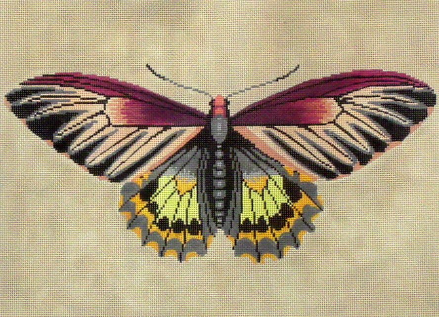 Moth (Magenta, Green, Yellow (Handpainted by the Meridith Collection) 18*C512A