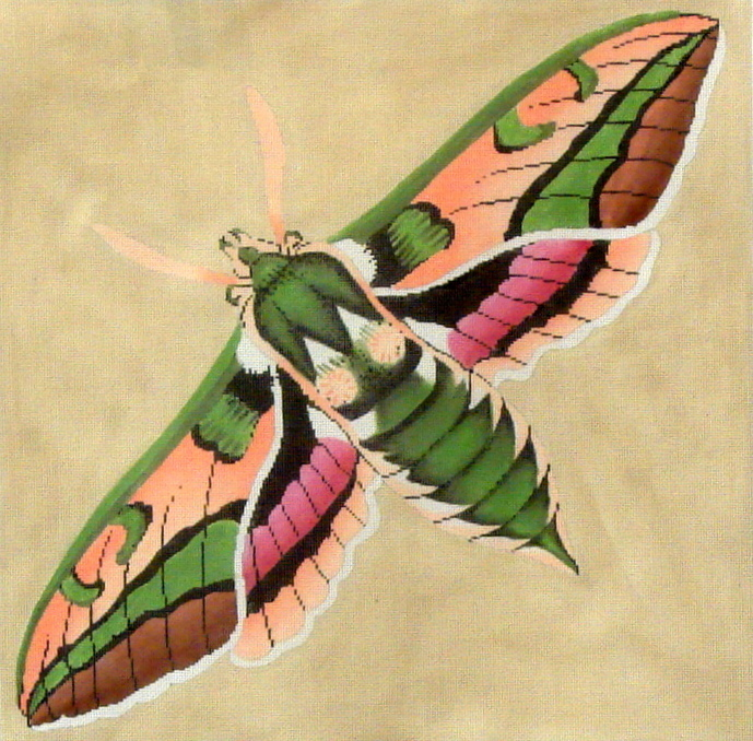 Moth: Green, Pink, Peach  (Handpainted by the Meridith Collection) 18*C-511D