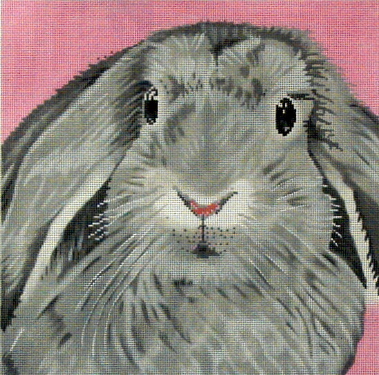 Floppy Bunny    (The Merideth Collection, ETC) *C-450-BB
