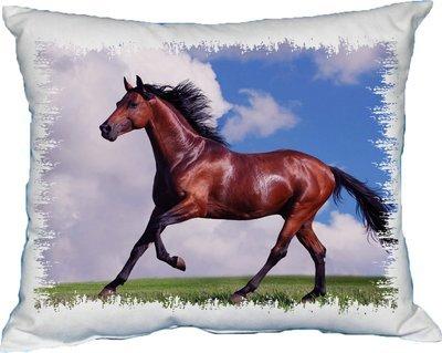 Polštářek Kůň hnědý 2