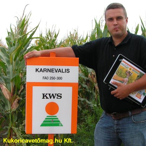 KARNEVALIS FAO 250-300