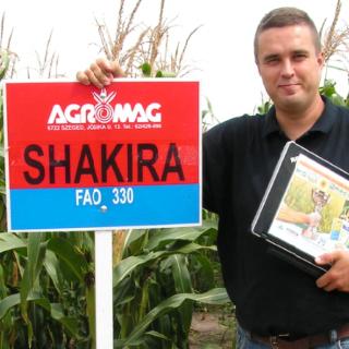 Shakira FAO 330 (70.000 szem/zsák)