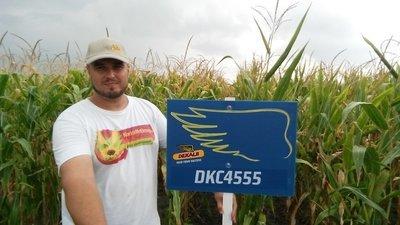 DKC 4555 FAO 350-360