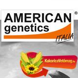 AGN 290 FAO 290 (25.000 szem/zsák)