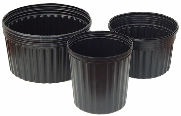 """8"""" Planting Container"""