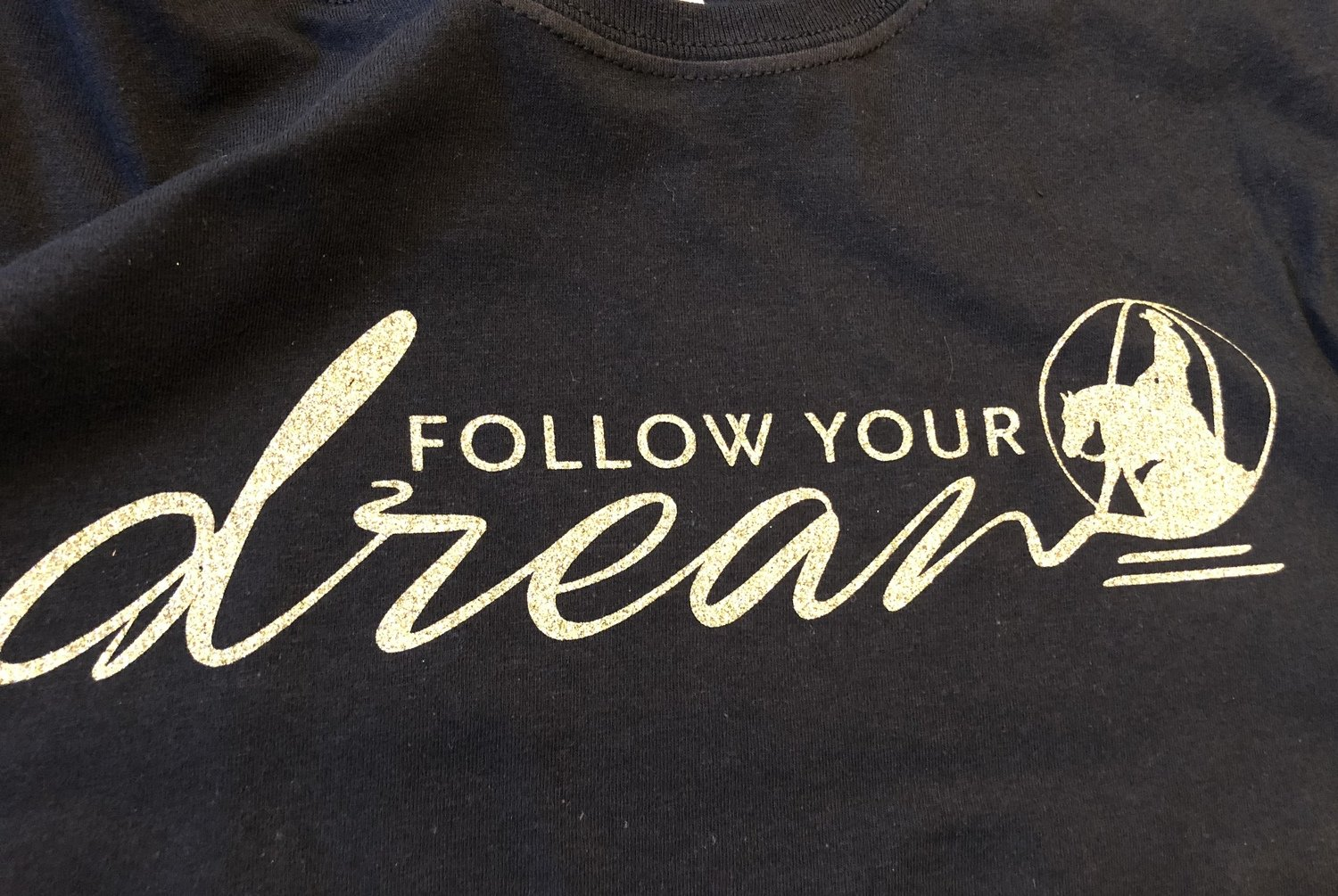 Follow Your Dreams- Reining