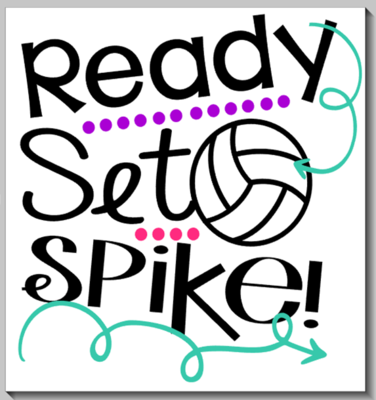 Ready Set Spike Volleyball