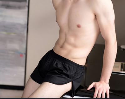 Underwear Briefs Mens Mesh /  Calzon Sexy Korean Style