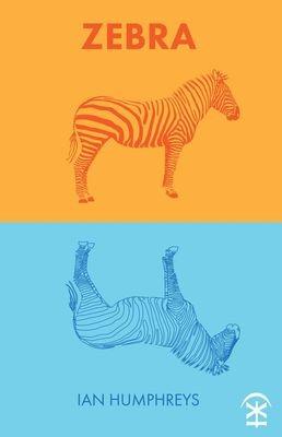Zebra - Ian Humphreys