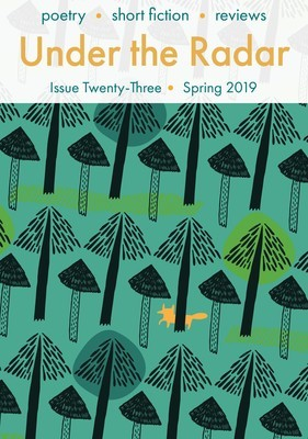 Under the Radar Issue 23 Spring 2019 (single issue)