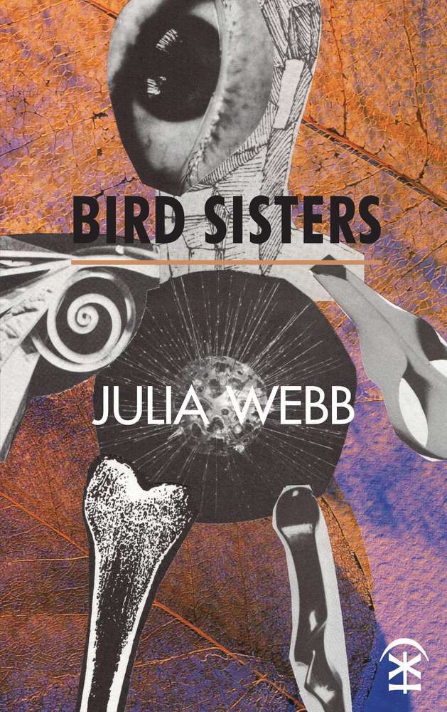 Bird Sisters - Julia Webb