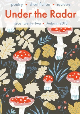 Under the Radar four-issue subscription - UK Postage