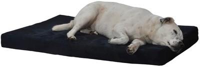 Dog Bed (waterproof)