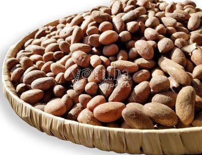 Fresh Obi Abata - Kola Nuts for Sale