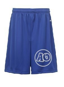 Badger Shorts w/screened logo