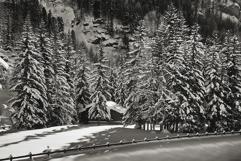 Casetta neve nel bosco