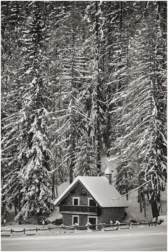 casa sotto gli alberi