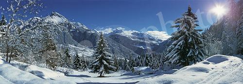 Bois de Joux - Val d'Ayas - Ayas