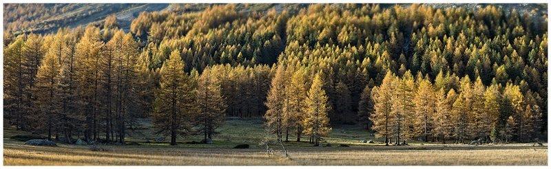 Autunno - Val Ferret