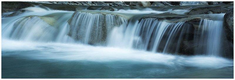 Water Life III