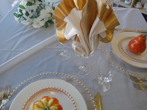 Ivory/Gold Sheer Elegance Orangza (Click on the picture for Options)